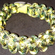 Tricolor Green/Yellow
